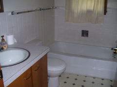 Real Estate - 711 713 Shannon, Kirksville, Missouri -